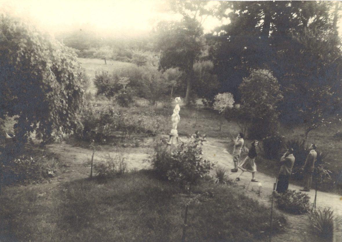 <p>Métamorphose dans le jardin de la maison à Mortagne-au-Perche</p>